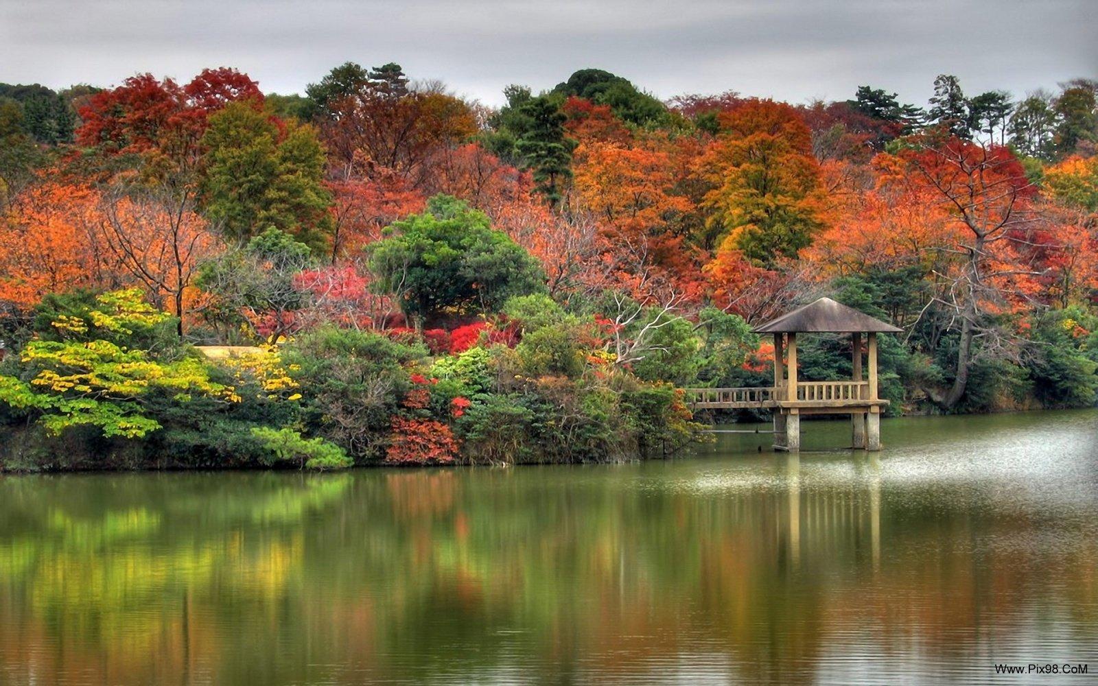 http://arashpic.persiangig.com/Nature/show/Www.Pix98.CoM_14.jpg