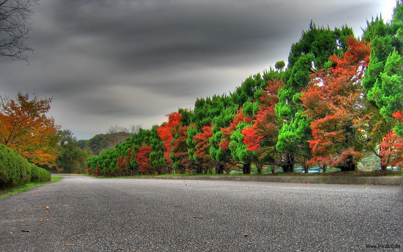 http://arashpic.persiangig.com/Nature/show/Www.Pix98.CoM_15.jpg